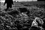 CANADA. Ontario. Lambton County. 1995. Peter, Susanna and Benjamin Peters in the spring wheat.