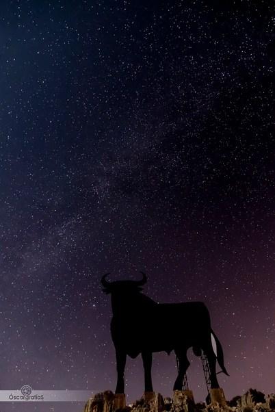 Ese Toro enamorado de las estrellas...