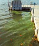 west lake osceola water source quality