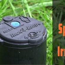 Best Rotor Sprinkler for Irrigation