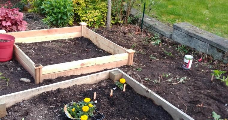 Gardening Update May 2, 2017