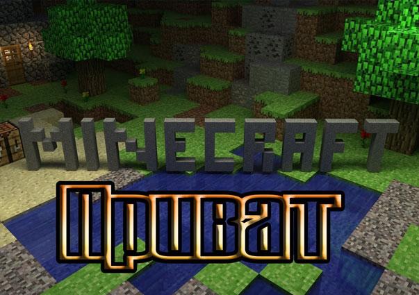 Приват в Minecraft