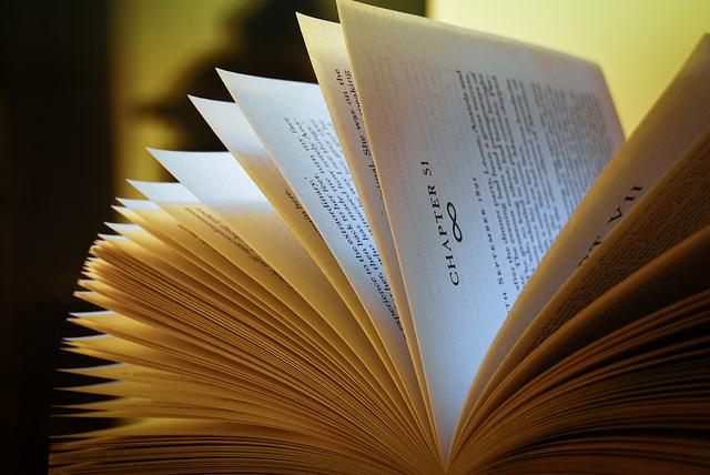 3cf19102ace Comment les écrivains enrichissent leurs romans avec des descriptions