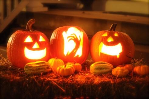 pumpkin-2327488_1920