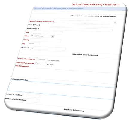 Reporting Web Portal