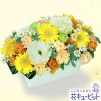 ビタミンカラーのお花が賑やかなアレンジメント【5,000円+税】511746