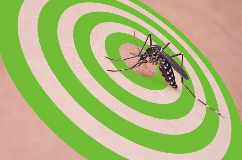 picaduras de mosquito en niños