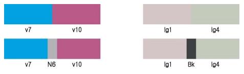 세퍼레이션,separation,분리,분리배색,배색기법,배색