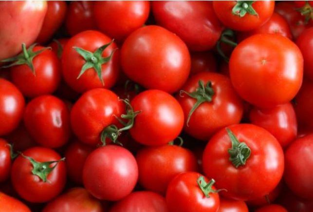 자외선 차단에 도움을 주는 토마토