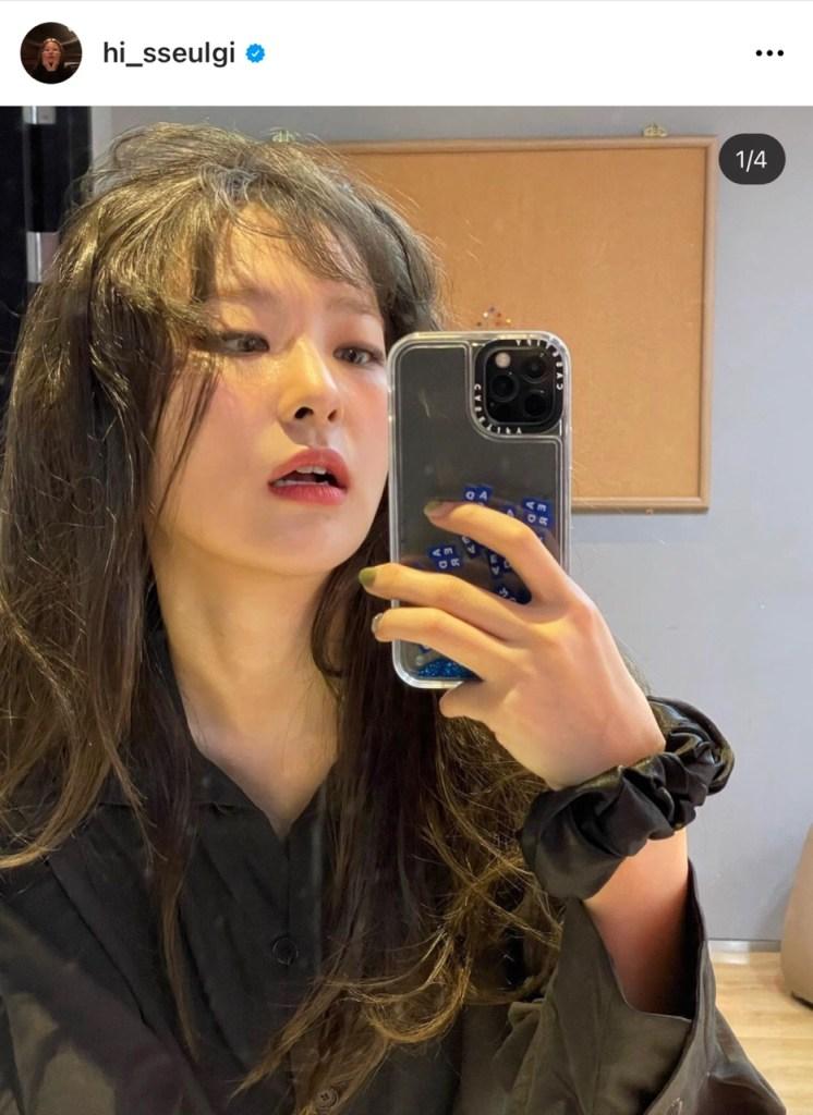 레드벨벳 슬기의 핸드폰 케이스