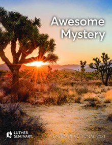 Cover of Awesome Mystery