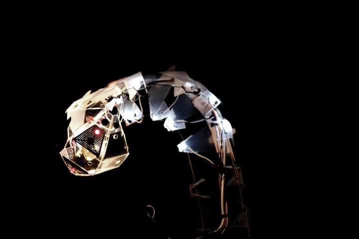 Ruairi Glynn :: The Lamp & The Glowworm
