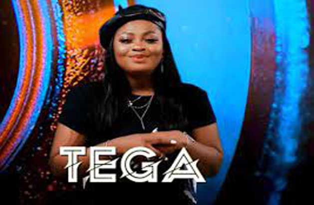 Again, BBN's Tega profusely apologizes to Nigerians