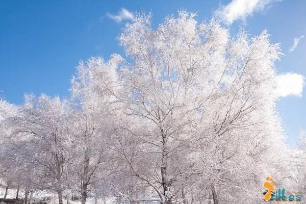 Neve no parque natural do alvao-10