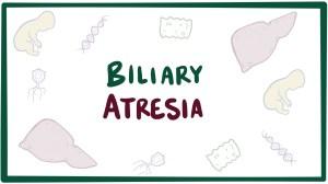 Biliary atresia  Osmosis Video Library