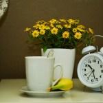 家事時間と自分時間ってどれくらい?