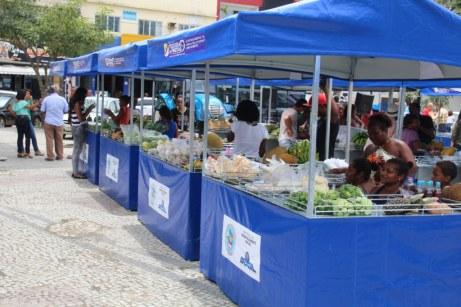 feira-agricultura-saude-ame-o-verde (27)