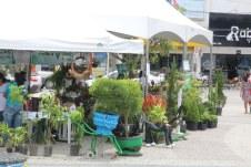feira-agricultura-saude-ame-o-verde (34)