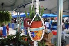 feira-agricultura-saude-ame-o-verde (50)