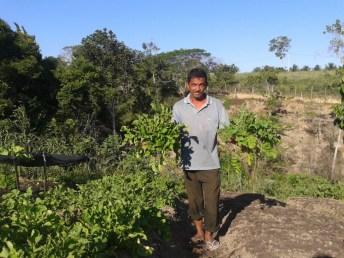 feira produtos organicoa indigenas produtores familiares (3)