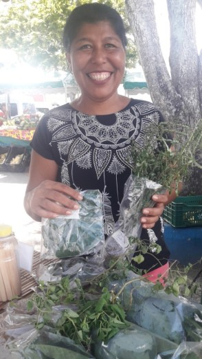 feira produtos organicoa indigenas produtores familiares (5)
