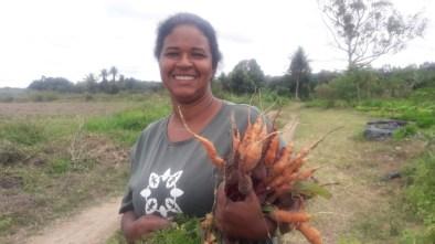 feira produtos organicoa indigenas produtores familiares (8)