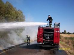 Pożar pobocza (1)