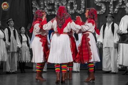 cjelovecernji-folklorni-koncert-odraslih-skupina-149