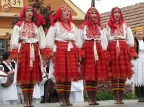 kulturna-suradnja-sa-hrvatina-u-madarskoj-237