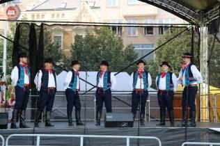 XXX. Međunarodni festival folklora Brno 2019.165