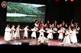 Lukovo u Novskoj, Novska 2019.11
