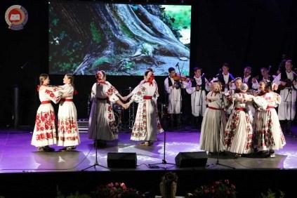 Lukovo u Novskoj, Novska 2019.43