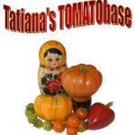 !Tatianas TOMATObase Logo - new1