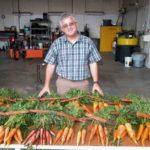 ossi breeder irwin goldman university of wisconsin carrots