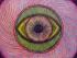 aiauasca_ayahuasca_vino_allucinogeno_vino dell'anima_lsd_allucinazioni_dtm_dmt_sciamano_sciamanesimo_sciamani_meditazione_allucinogeni_
