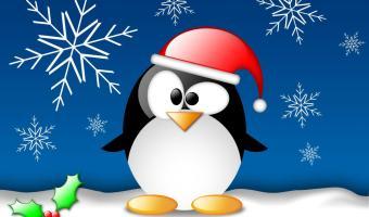 ~Holiday Celebration~