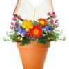 Book & Plant Sale Saturday, June 3rd  10AM-12PM