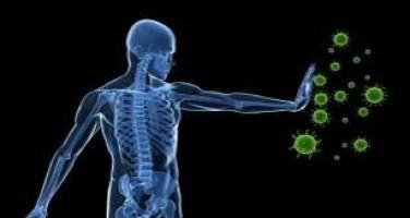 Body Green Immune Cells