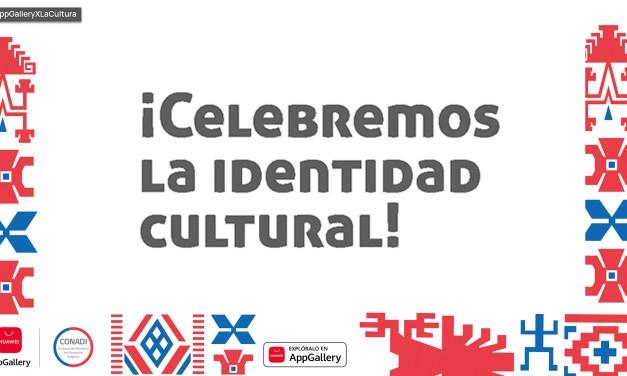 La AppGallery de Huawei suma aplicaciones que rescatan las lenguas Mapuche y Ckunza