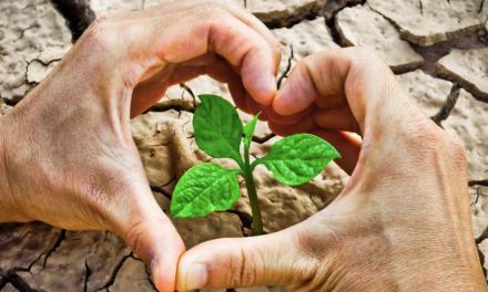 Epson recibe la clasificación Platino de EcoVadis en sostenibilidad