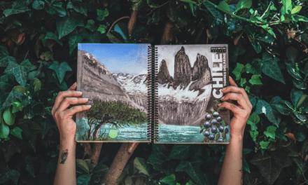 Ekuwün: el cuaderno ecológico que germina al ser sembrado y su semilla se relaciona con el paisaje pintado en la portada