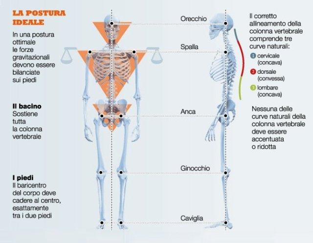 simonetta alibrandi osteopata la postura ideale