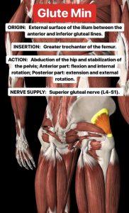 Simonetta-Alibrandi-Osteopata-personal-trainer-posturologo-mal-di-schiena-esercizi-lombalgia-glutei-stretching-corsa-Total body Postural Adjustment