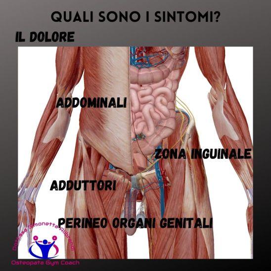 simonetta-alibrandi-osteopata-massotrapista-pubalgia-esercizi-rimedi-posture-mezieres-sintomi