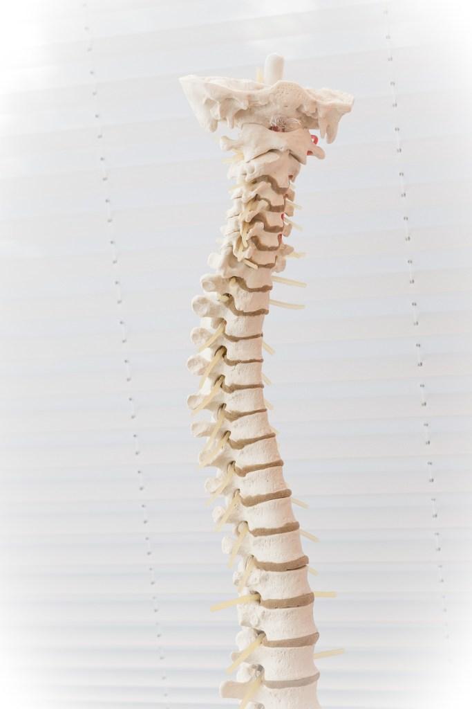 Les manipulations vertébrales, une aide modeste contre le mal de dos
