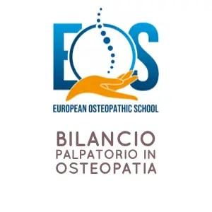 Bilancio palpatorio in osteopatia