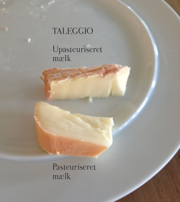 To typer Taleggio