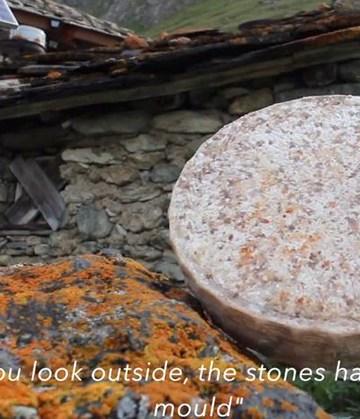 Terroir i sten og ost