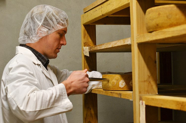 Test af osten