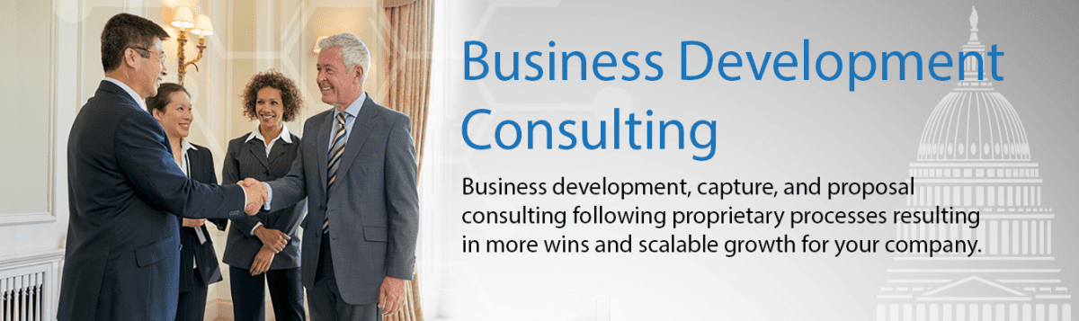 Government Contracting Business Development Consultants